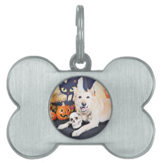Halloween - Golden Labrador - Lola Pet Tags