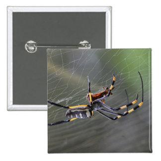 Halloween Golden Spider Pinback Button
