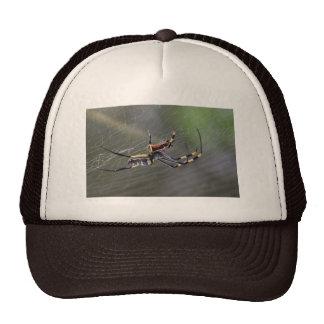 Halloween Golden Spider Trucker Hat