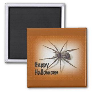 Halloween Greetings - Dolomedes tenebrosus Spider Magnet
