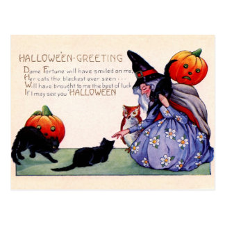 Halloween greetings from the Witch, Owl and Cats Postcard