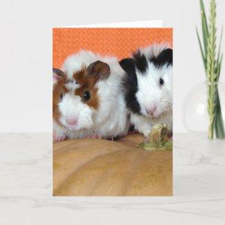 Halloween Guinea Pigs card