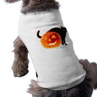 Halloween Jack-O-Lantern and Black Cat Dog Clothing