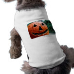 Halloween Jack O Lantern close up Pet Clothing