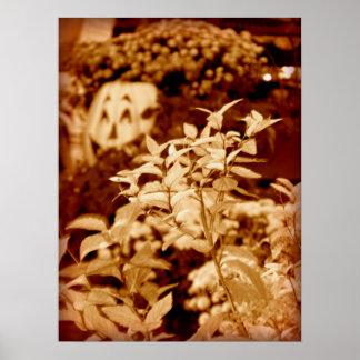 Halloween Jack-o'-lantern with Flowers - Sepia Poster