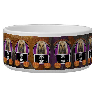 Halloween - Just a Lil Spooky - Afghan Pet Bowls