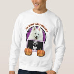 Halloween - Just a Lil Spooky - American Eskimo Pull Over Sweatshirts