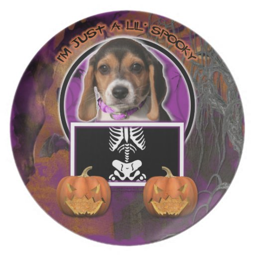 Halloween - Just a Lil Spooky - Beagle Puppy Dinner Plates