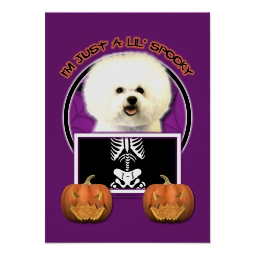 Halloween - Just a Lil Spooky - Bichon Frise Posters