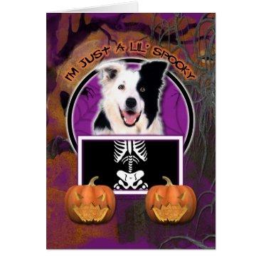 Halloween Themed Halloween - Just a Lil Spooky - Border Collie Card