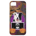 Halloween - Just a Lil Spooky - Border Collie iPhone 5 Cover