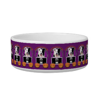 Halloween - Just a Lil Spooky - Border Collie Pet Food Bowls
