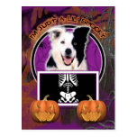 Halloween - Just a Lil Spooky - Border Collie Postcard