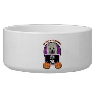 Halloween - Just a Lil Spooky - Cairn - Teddy Bear Dog Bowls