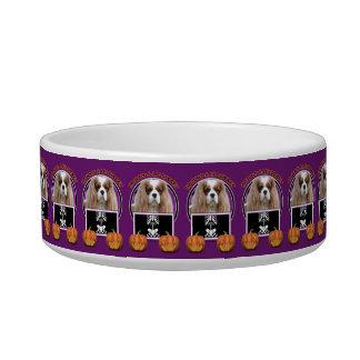 Halloween - Just a Lil Spooky - Cavalier - Blenhei Pet Food Bowl