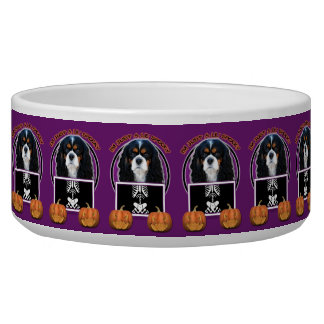 Halloween - Just a Lil Spooky - Cavalier - Tri-col Dog Bowl