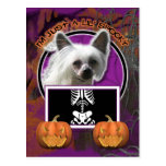 Halloween - Just a Lil Spooky - Chinese Crested Postcard