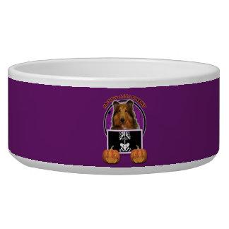 Halloween - Just a Lil Spooky - Collie - Natalie Pet Food Bowls