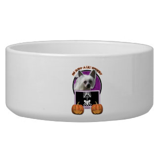 Halloween - Just a Lil Spooky - Crestie - Kahlo Dog Water Bowl