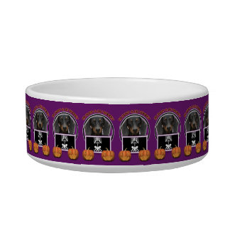Halloween - Just a Lil Spooky - Doxie - Winston Pet Water Bowl