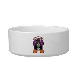 Halloween - Just a Lil Spooky - Frenchie - Teal Cat Food Bowls