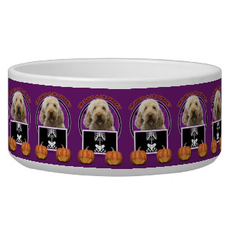 Halloween - Just a Lil Spooky - GoldenDoodle Pet Water Bowls
