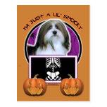 Halloween - Just a Lil Spooky - Havanese Postcard