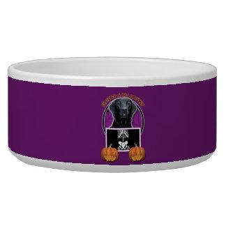 Halloween - Just a Lil Spooky - Labrador - Black Dog Bowl