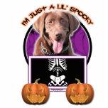 Halloween - Just a Lil Spooky - Labrador Chocolate Photo Sculpture