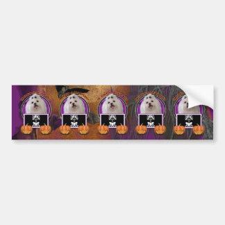 Halloween - Just a Lil Spooky - Maltese Bumper Sticker
