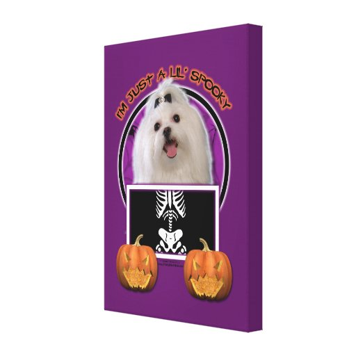 Halloween - Just a Lil Spooky - Maltese Canvas Prints