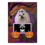 Halloween - Just a Lil Spooky - Maltese Greeting Card
