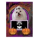 Halloween - Just a Lil Spooky - Maltese Postcard