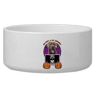 Halloween - Just a Lil Spooky - Mastiff - Snoop Pet Food Bowl