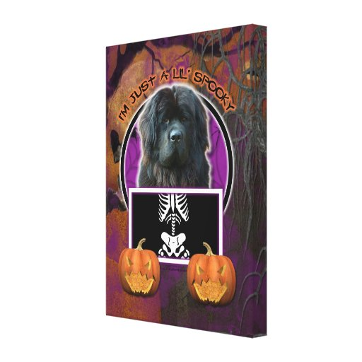 Halloween - Just a Lil Spooky - Newfoundland Canvas Print
