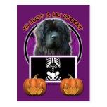Halloween - Just a Lil Spooky - Newfoundland Postcard