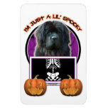 Halloween - Just a Lil Spooky - Newfoundland Rectangle Magnet