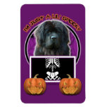 Halloween - Just a Lil Spooky - Newfoundland Flexible Magnets