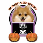 Halloween - Just a Lil Spooky - Pomeranian Acrylic Cut Outs
