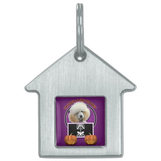 Halloween - Just a Lil Spooky - Poodle - Apricot Pet Name Tag