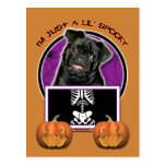 Halloween - Just a Lil Spooky - Pug - Ruffy Postcard