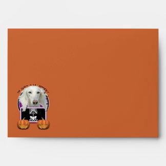 Halloween - Just a Lil Spooky - Saluki Envelope