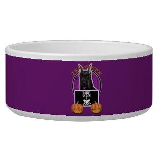 Halloween - Just a Lil Spooky - Schnauzer Dog Water Bowls