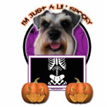 Halloween - Just a Lil Spooky - Schnauzer Acrylic Cut Outs