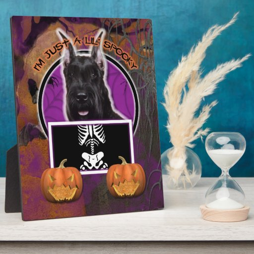 Halloween - Just a Lil Spooky - Schnauzer Photo Plaque
