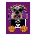 Halloween - Just a Lil Spooky - Schnauzer Postcard