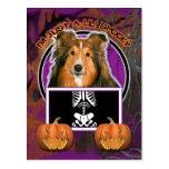 Halloween - Just a Lil Spooky - Sheltie Postcard