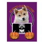 Halloween - Just a Lil Spooky - Shiba Inu Postcard