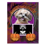 Halloween - Just a Lil Spooky - ShihPoo - Maggie Post Cards
