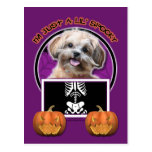 Halloween - Just a Lil Spooky - ShihPoo - Maggie Postcards